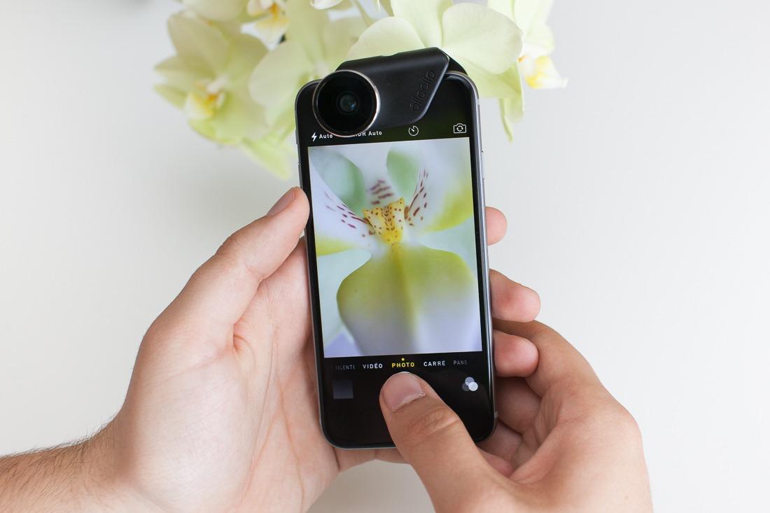 macro-fleur-iphone6-objectif